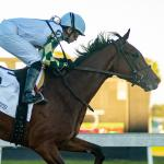 Sole Volante Looks Like Serious Player on Kentucky Derby Trail
