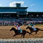 The Main Track: Songbird's Visit Makes for a Great Day at Delaware