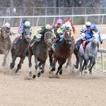 Haskin's Derby Dozen for Feb. 20
