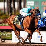 Kentucky Derby Futures: Rounding Into Form for the Holidays