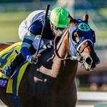 Evaluating Breeders' Cup Juvenile Winner Storm the Court's Derby Prospects