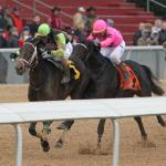 Longshot Super Steed Posts Upset in Southwest Stakes