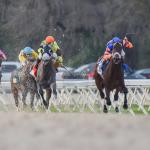Where to Watch/Listen: Horse Racing Coverage for April 10-12