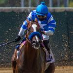 America's Best Horses for Aug. 3