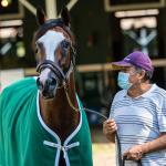 America's Best Horses for July 27