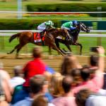 Where to Watch/Listen During Travers Week 2018