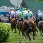 Dan's Double: Saturday Turf Angles at Churchill
