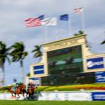 Where to Watch/Listen During 2020 Florida Derby Week