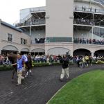 Turfway Park Primer: What to Know, Where to Go on Spiral Stakes Day