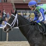 A Closer Look at Runaway Smarty Jones Winner Uncontested (también en Español)