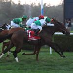 2020 Mint Julep Stakes at a Glance