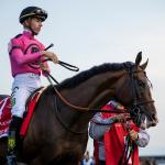 War of Will 'Great' After Preakness, Pointing to Belmont