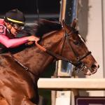 Five Questions to Be Answered in the 2019 Louisiana Derby