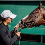 Road to 2019 Preakness: Three Heating Up, Three Cooling Down