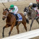 Haskin's Derby Dozen for March 25
