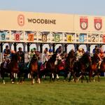 Betting War of Will in the Woodbine Mile Trifecta