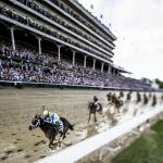 Major Shifts in Vegas Kentucky Derby Futures, Plus Five to Follow