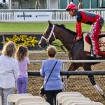 Bram's Preakness Take: A Classic Dream is Coming to New York