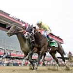 Cloud Computing Overhauls Classic Empire Late for Preakness Upset