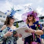 A Beginner's Guide to the Kentucky Derby