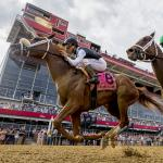 Satisfying Black-Eyed Susan Victory for Connections of Point of Honor