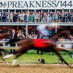 How to Throw the Perfect Preakness at Home Party