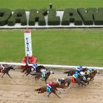 Betting a Front-Runner in Smarty Jones Stakes