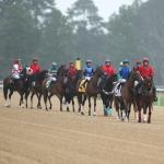 Piassek's Plays: Identifying Betting Angles at Oaklawn