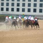 2021 Southwest Stakes at a Glance