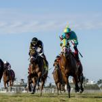 Best Bets: Stakes Focus at Keeneland, Oaklawn, Santa Anita