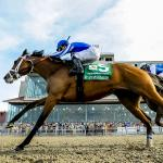 Stay Lucky Picks: Risen Star Stakes Weekend Kicks Off 2020 Season