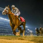 California Chrome's Dubai World Cup Named 2016 NTRA Moment of the Year
